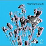 Fractured Beauty
