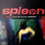 Spleen